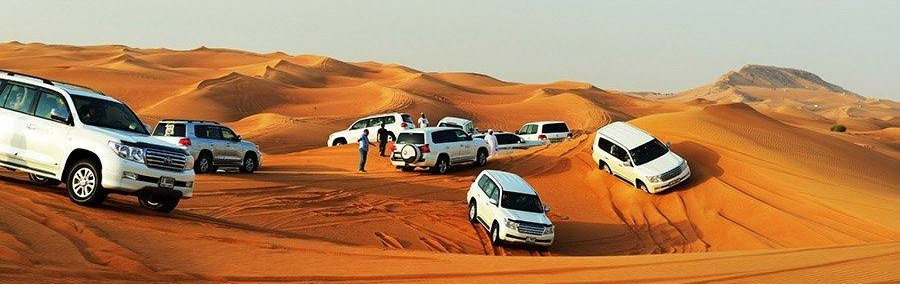 Red Dune Desert Safari Tickets Tohama Travel