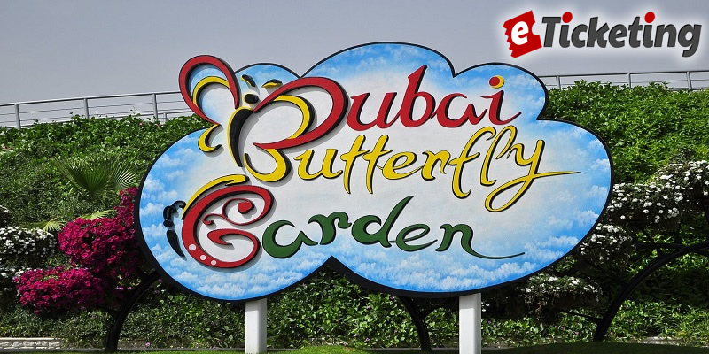 Dubai Butterfly Garden Tickets